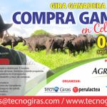 Gira Ganadera Compra Ganado en Colombia