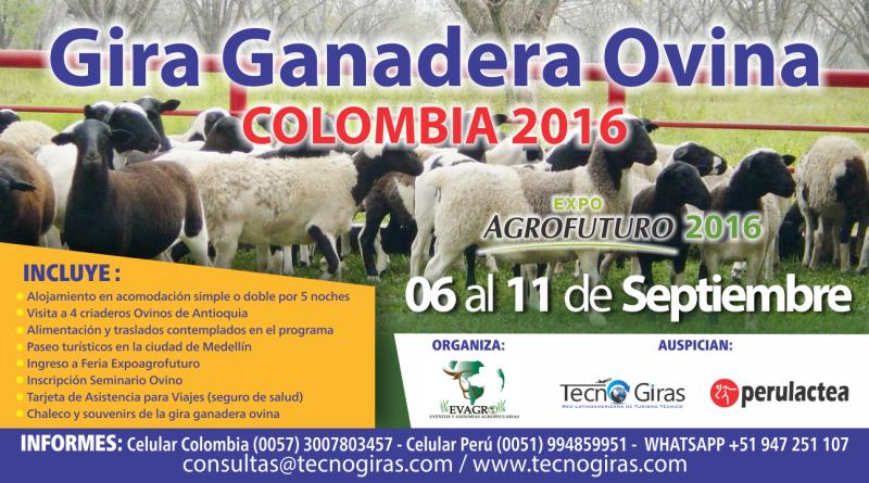 GIRA GANADERA OVINA COLOMBIA 2016
