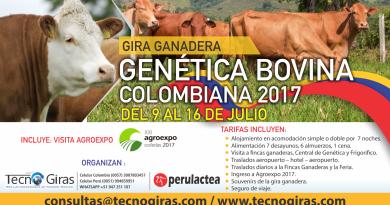 Gira Genética Bovina Colombiana 2017