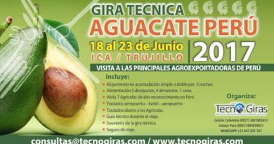Gira Técnica de Aguacate Perú 2017