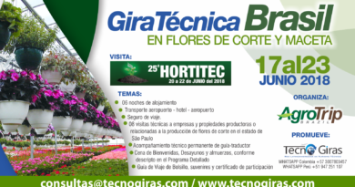 Gira Técnica Brasil en Flores de Corte y Maceta