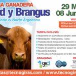 Gira Ganadera Braford y Brangus Argentina 2018