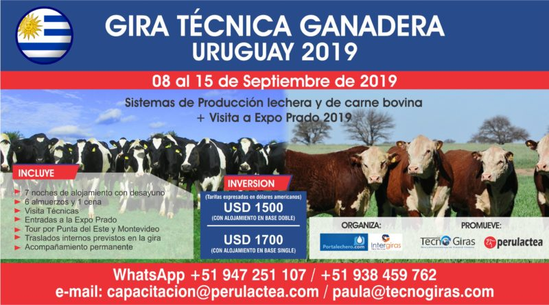 Gira Técnica Ganadera Uruguay 2019